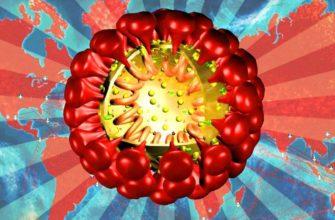 Сможет или нет уничтожить человеческую цивилизацию коронавирус