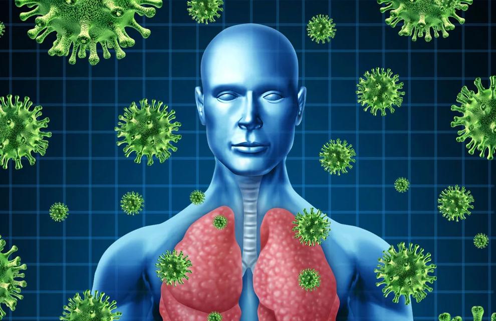 Что представляет собой коронавирусная инфекция?