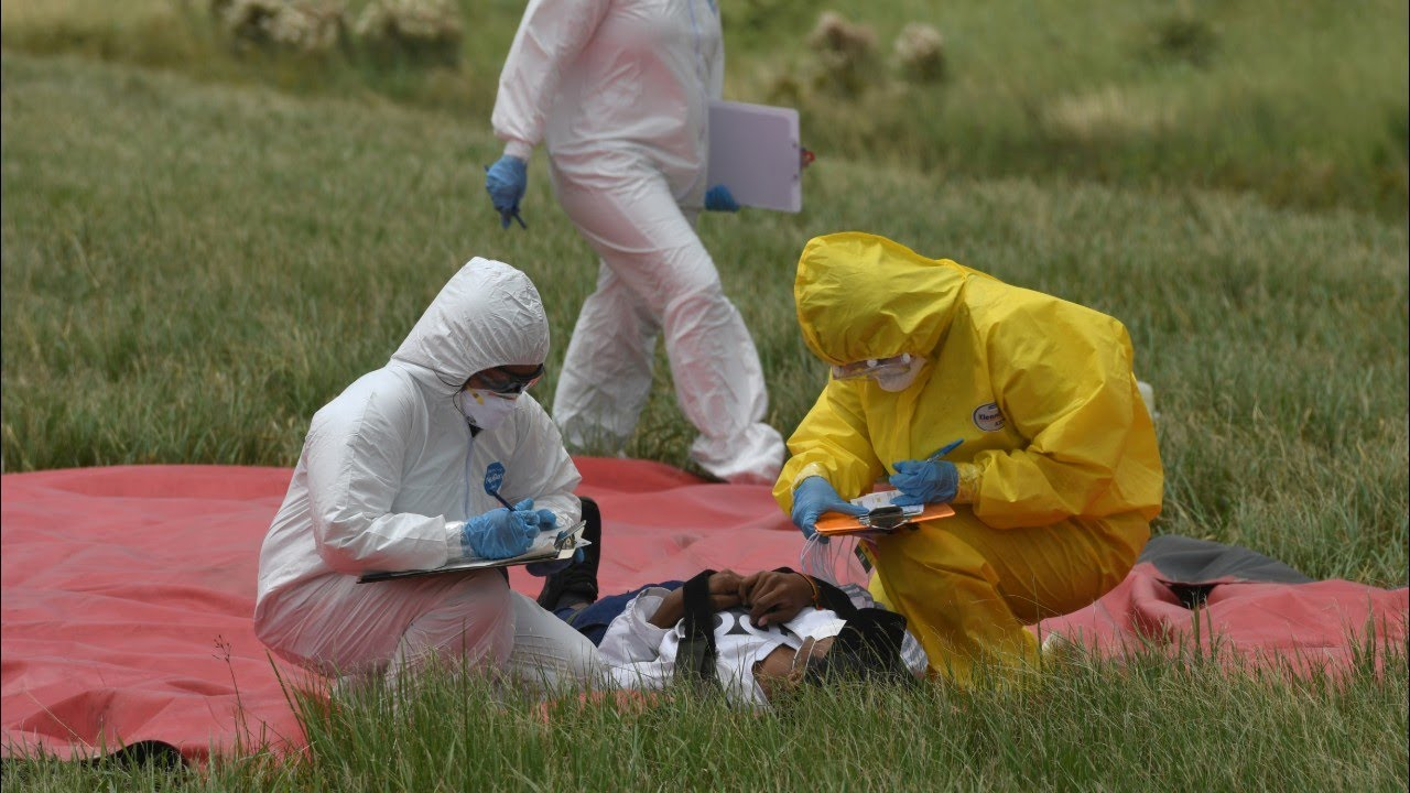 Новости о распространении вируса по планете