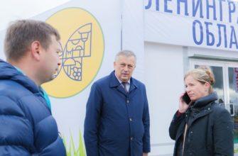 Последние новости о коронавирусе в Санкт-Петербурге и Ленинградской области